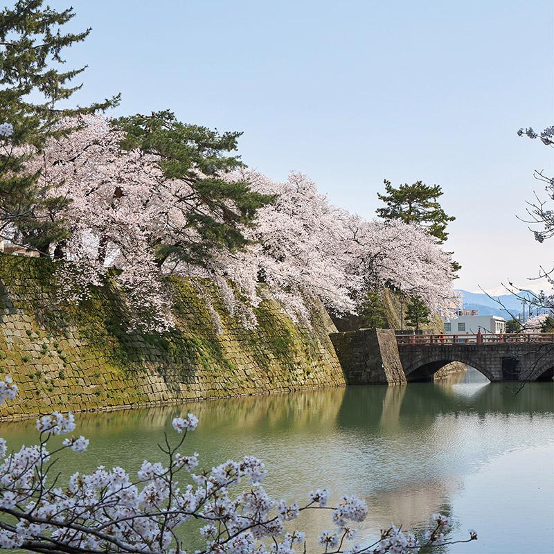福井城跡イメージ